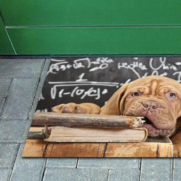 Tappeto FuoriPorta Math Dog
